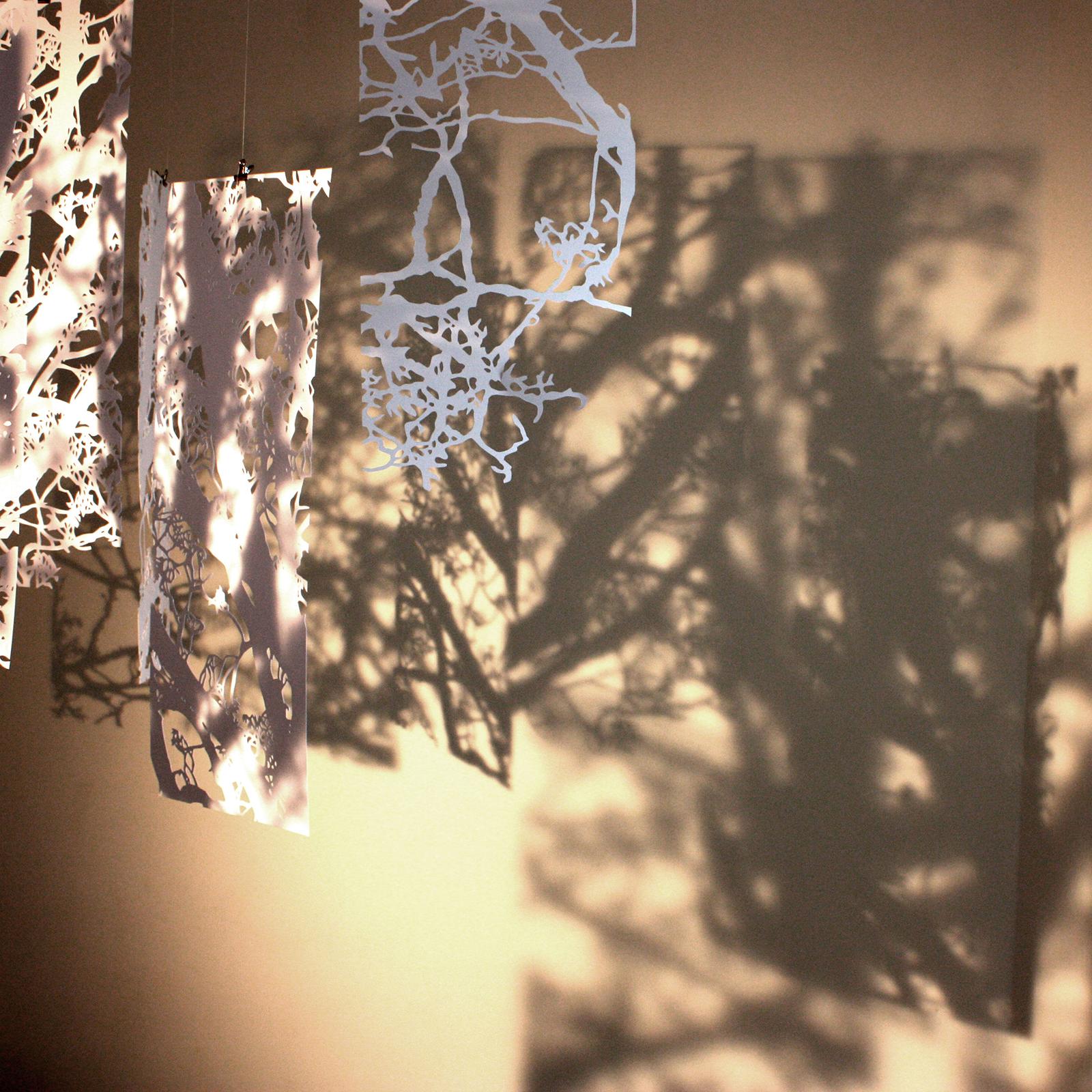 Théâtre d'ombre, apparition et disparition du chêne selon le mouvement des mobiles