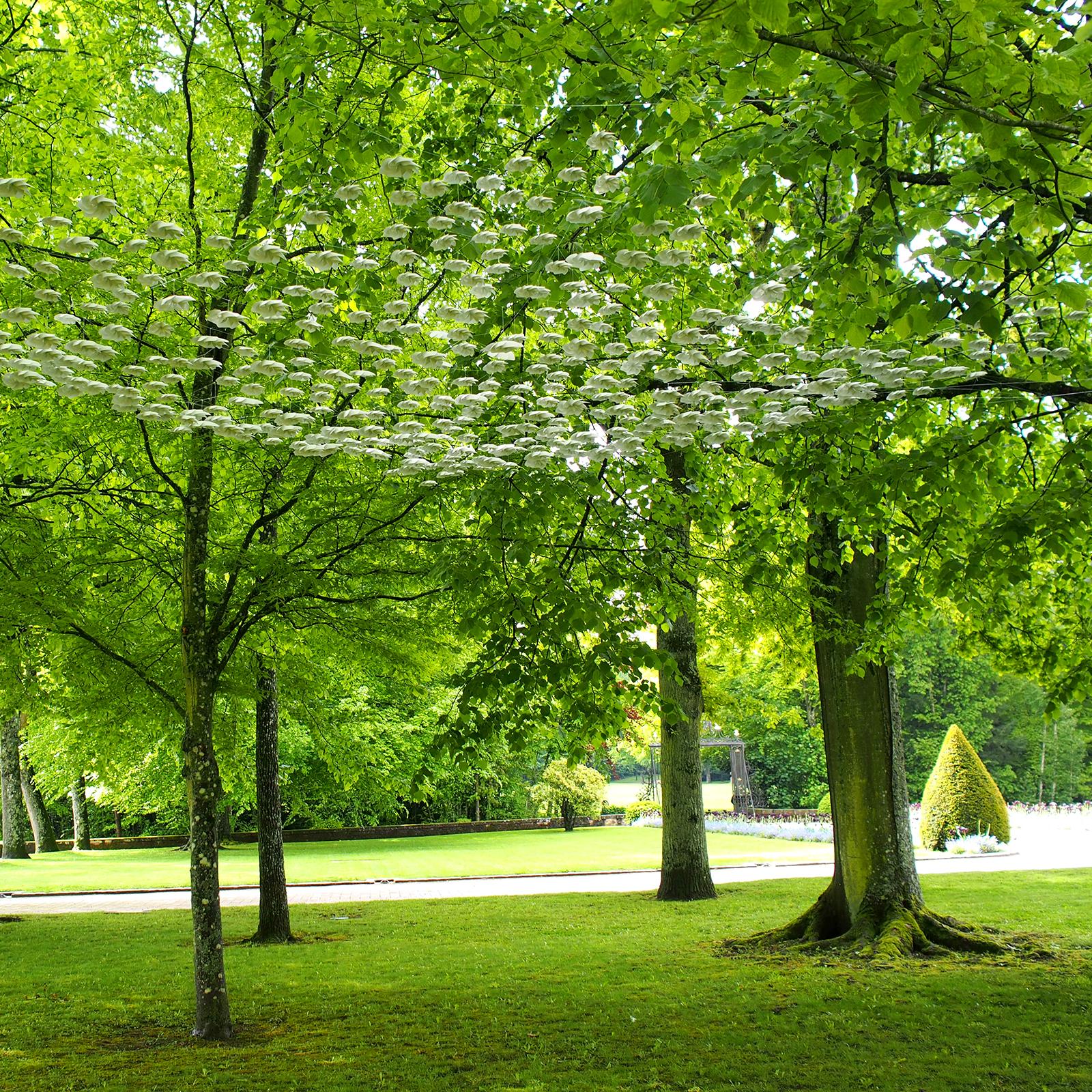 Installation composée de quatre cents hélice de papier minéral blanc suspendues sur un filet entre les ramures de quatre arbres